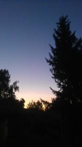 ...finally...evening light.