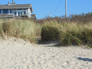 I look back from the beach, and as with so many mysteries, it seems to have disappeared.
