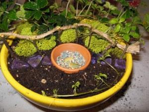 A garden in miniature.