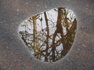 Reflected sky, and a metaphor for reflection.