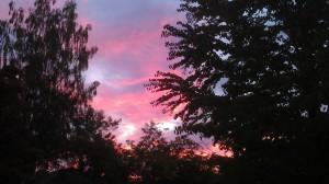 One of many sunrises.