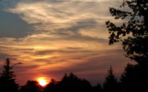 What is there to say about a sunrise? It is, in a sense, the only 'do over' we get; a new day.