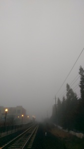 Walking in fog; it's a metaphor.