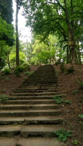 It's a journey with a lot of stairs to climb...