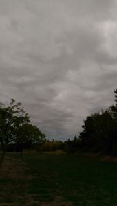Stormy skies have their own beauty.