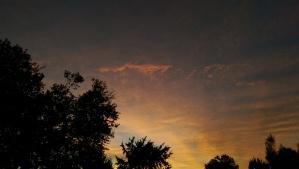 One sunrise of many.