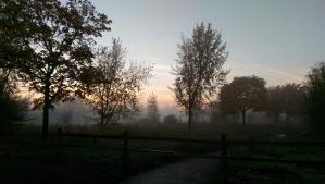 A lovely misty morning walk before the rain began.