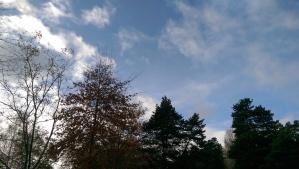 Blue sky between rain showers.