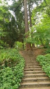 Sometimes it feels like an uphill climb.