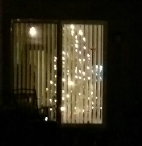 Holiday lights welcome me home each evening.