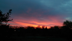 It may have felt too early, but this morning I woke to a beautiful sunrise just beyond the window. Worth it.