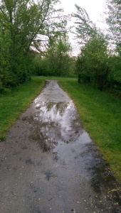 However straight and obvious life's path seems at a glance... I can't quite see where it leads.