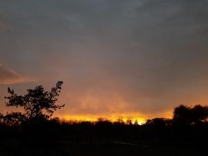 Yesterday's dawn