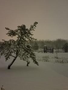 Eerie pre-dawn sky, on a snowy day.