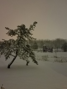 Eerie pre-dawn sky, on a snowy day.