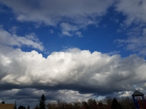 Yesterday's blue skies took no notice of my pain. I made a point of noticing the blue skies. :-)